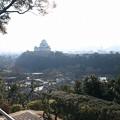 男山から見た姫路城(1)