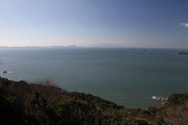 世界の梅公園からみた小豆島