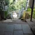 参道の階段 杉本観音