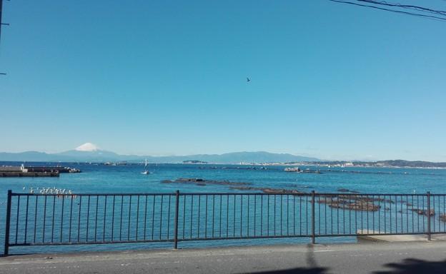 a superb view at Hayama