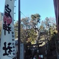 Photos: 愛宕神社 出世の石段
