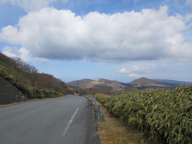 写真: 仁科峠から達磨山