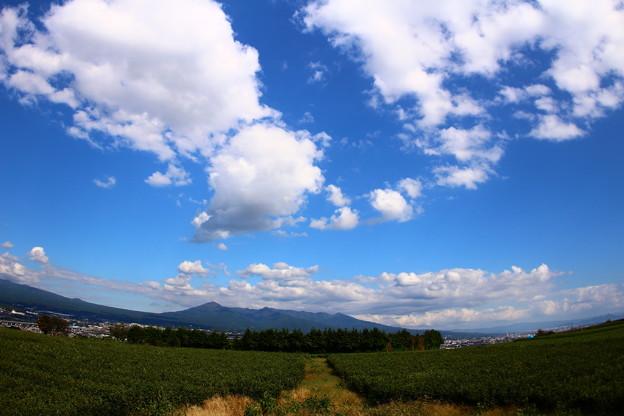 茶畑農道より秋空のお知らせ