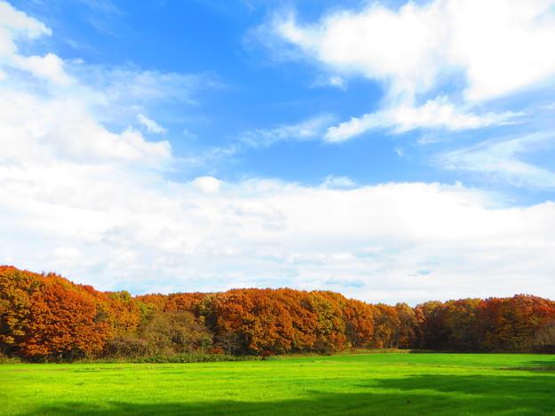Photos: 紅葉のある風景 8
