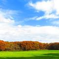 紅葉のある風景 8