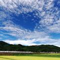 Photos: 秋空の調べ
