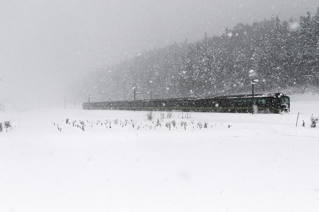 Photos: 吹雪列車
