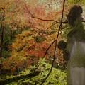 写真: 紅葉と慈母観音像
