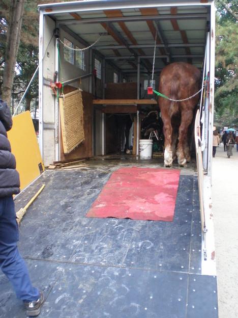 Photos: 馬トラック