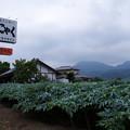 写真: 上州の空