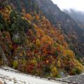 写真: 高瀬ダム -1