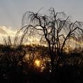 写真: 陽が落ちて・・