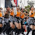 写真: わいわい連_11 - 第11回 東京よさこい 2010