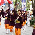 写真: 多摩っこ_09 - 良い世さ来い2010 新横黒船祭