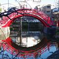 写真: 亀戸天神社 (2)