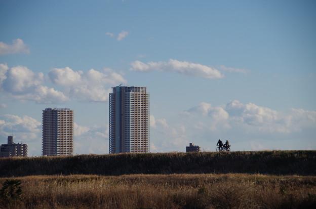写真: 河原 (1)