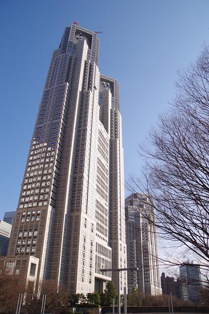 写真: 都庁_k70