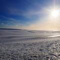 写真: 雪原と太陽
