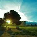 ゼウス神殿に日が昇る