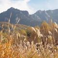 Photos: 秋風景