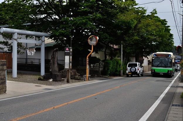 秋田城跡 08