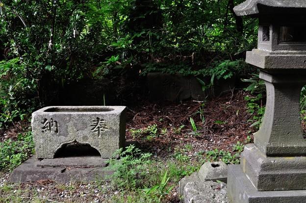 空素沼神社 04