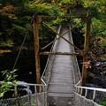 花巻温泉 釜淵の滝・紅葉橋 12