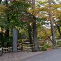 花巻温泉 釜淵の滝・紅葉橋 14