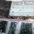 又雨になってしまった。