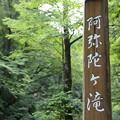 阿弥陀ヶの滝10