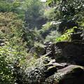 阿弥陀ヶの滝28