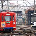 写真: 阪堺電軌 505