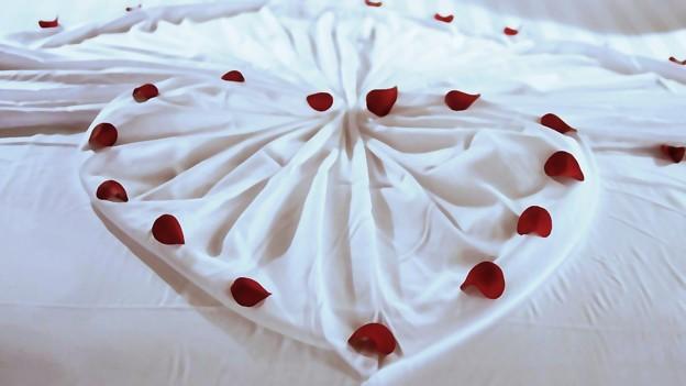「第118回モノコン」花飾り