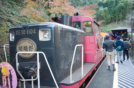 pic28.嵯峨野トロッコ鉄道(1)