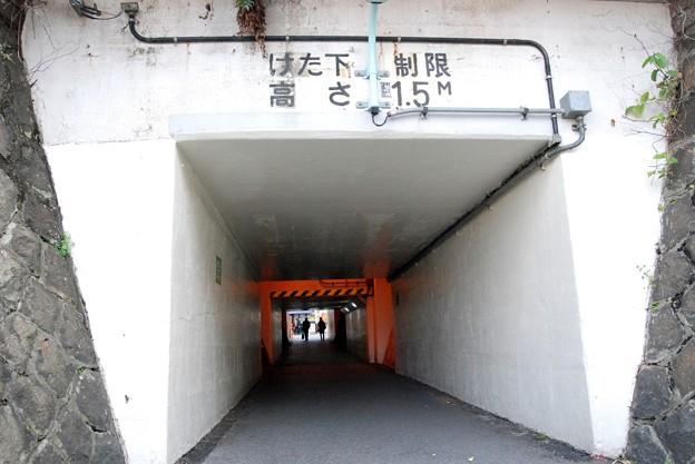 平井ロケ_5093