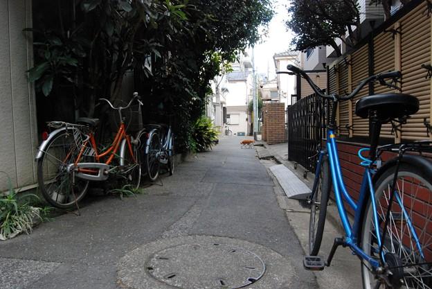 平井ロケ_5096