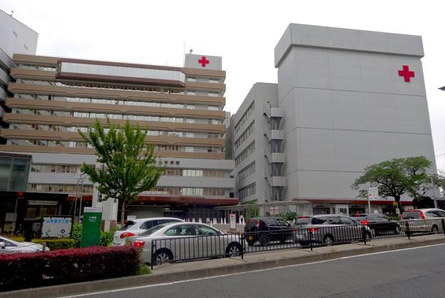 「赤十字」の画像検索結果