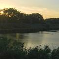 写真: 夕暮れ時のため池 - 2
