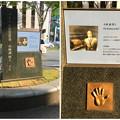 写真: 錦通沿いに設置された、ノーベル賞学者・小林誠さんの手形 - 3