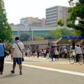 写真: 「ポケモンGo」をやりに来た人たちでごった返す鶴舞公園 - 60