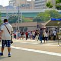 写真: 「ポケモンGo」をやりに来た人たちでごった返す鶴舞公園 - 61