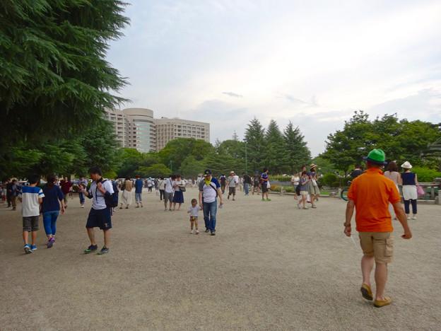 ポケモンGoをする人でごった返す鶴舞公園(2016年7月31日) - 5