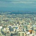 写真: ミッドランドスクエア「スカイプロムナード」から見た景色(2012年9月9日撮影) - 2:東山スカイタワー
