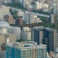 写真: ミッドランドスクエア「スカイプロムナード」から見た景色(夕方) - 44:名古屋市科学館と白川公園