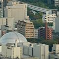 写真: ミッドランドスクエア「スカイプロムナード」から見た景色(夕方) - 46:名古屋市科学館と矢場町交差点の歩道橋