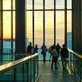 写真: ミッドランドスクエア「スカイプロムナード」から見た景色(夕方) - 57:夕焼けを見る人たち