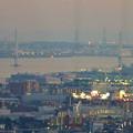 写真: ミッドランドスクエア「スカイプロムナード」から見た景色(夕方) - 95:名港中央大橋