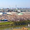 写真: 清洲城から見た三菱電機稲沢製作所のエレベーター試験塔(2012年4月撮影) - 2