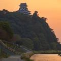 Photos: 夕焼けに染まる犬山城 - 6