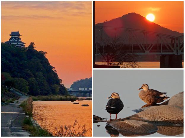 Photos: 夕暮れ時の木曽川沿い(犬山城周辺)- 3